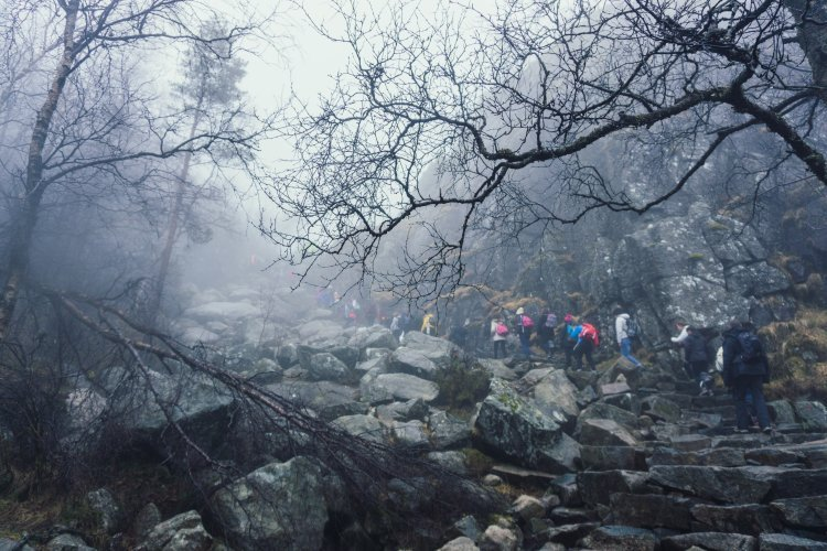 Image of large group of people ascending steep stone steps on the Pulpit Rock hike in Norway