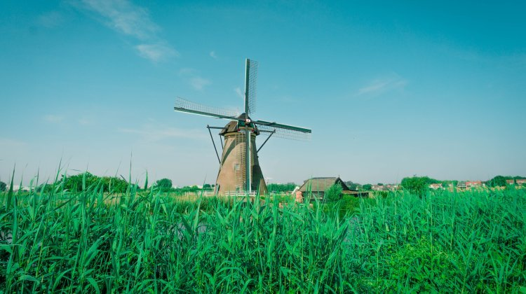Visiting the Kinderdijk Windmills from Rotterdam | Kat is Travelling