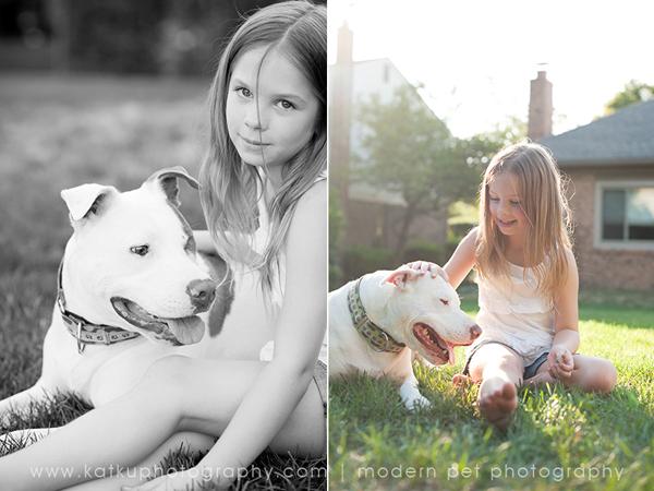 Michigan-Pet-Photography_Mellow-the-Pitbull_-02