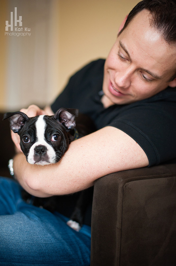 Kat-Ku-Photography_Boston-Terrier-Puppy06
