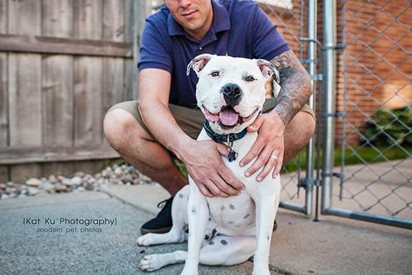 Kat Ku Michigan Pet Photography - Scrappy the White Pit Bull_03