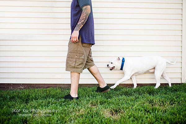Kat Ku Photography_Canton Pet Photography_16