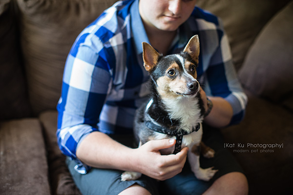 Kat Ku Photography_Dasher the Corgi Mix_04