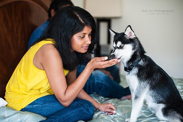 Kat Ku_Troy Pet Photos_Alaskan Klee Klai_09