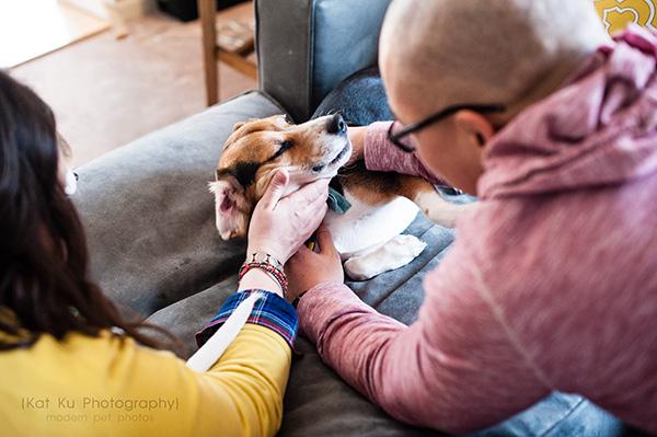 Kat Ku_Benny and Lulu_Beagle_25