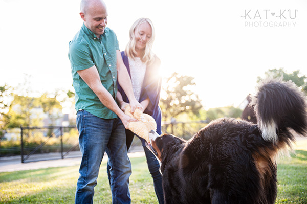 Kat Ku_Bernese Mountain Dog_Detroit Pet Photography_17