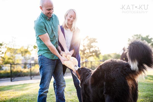 Kat Ku_Bernese Mountain Dog_Detroit Pet Photography_17