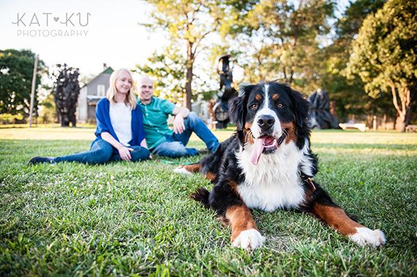 Kat Ku_Bernese Mountain Dog_Detroit Pet Photography_22