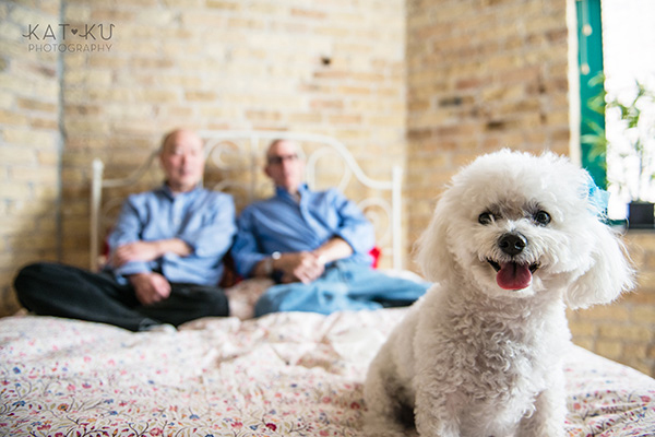 All Rights Reserved_Kat Ku_Chicago Pet Photography_Snowball_06