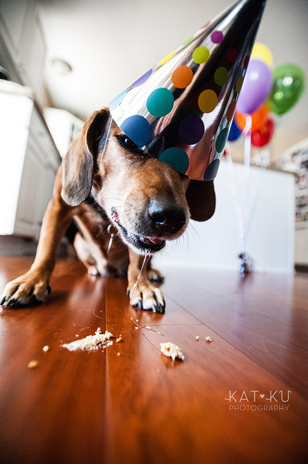 All Rights Reserved_Kat Ku_Puppy Party Birthday Bash_20