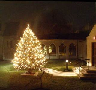 church courtyard with lighted tree