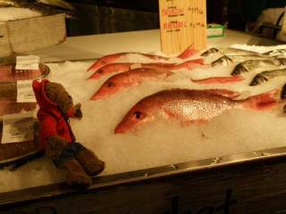 Lippe inspects the fish