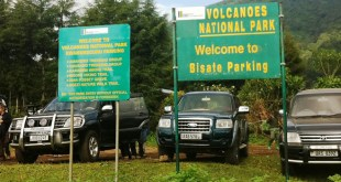 Transport to Volcanos Gorilla park