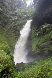 Get this Cheap Gorilla Trekking Uganda and Rwanda offer for you