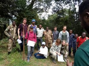 4 Hour Uganda Gorilla Trek