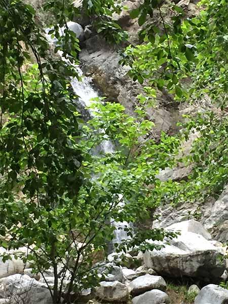 Eaton Canyon Falls through the trees