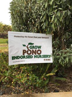 Nursery business sign