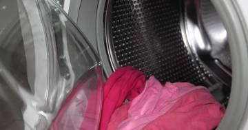waschmaschine tierhaare header