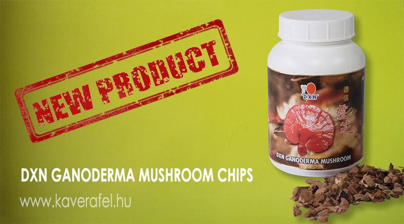 DXN-ganoderma-mushroom-chips