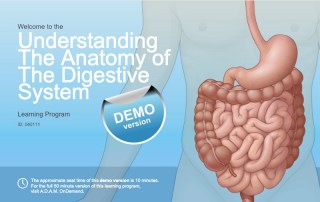 Module iSpring Anatomy digestive system