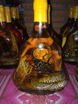 Vinho de cobra no Vietnã