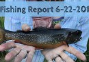 Fishing Report 6-22-2017