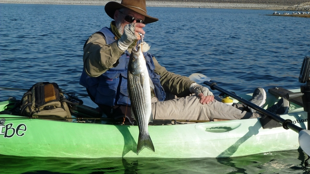 KFFC Annual Striper Outing at ForeBay