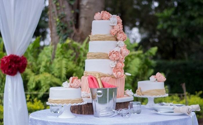 Cake – 5