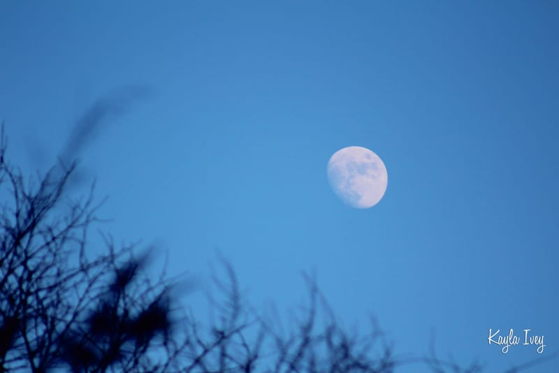 Moonsmall