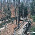 Bedford Reservation Hike