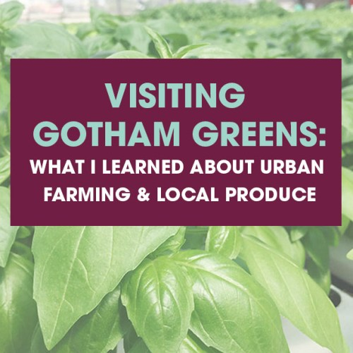 Visiting Gotham Greens: What I learned about urban farming, hydroponics and local produce.