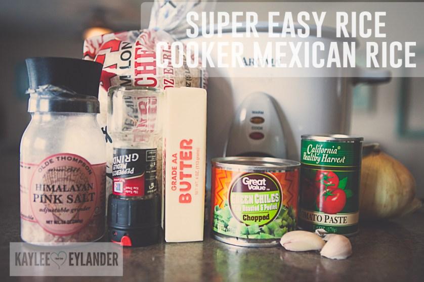 Super Easy Mexican recipe-5