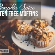 Pumpkin Gluten Free Muffins | No Grains, No Gluten , Pure Yum!