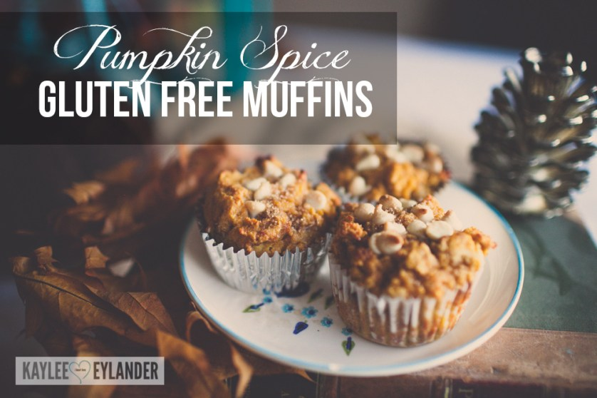 Pumpkin Muffin Recipe Gluten Free-2