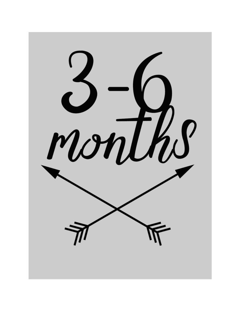 3-6-months