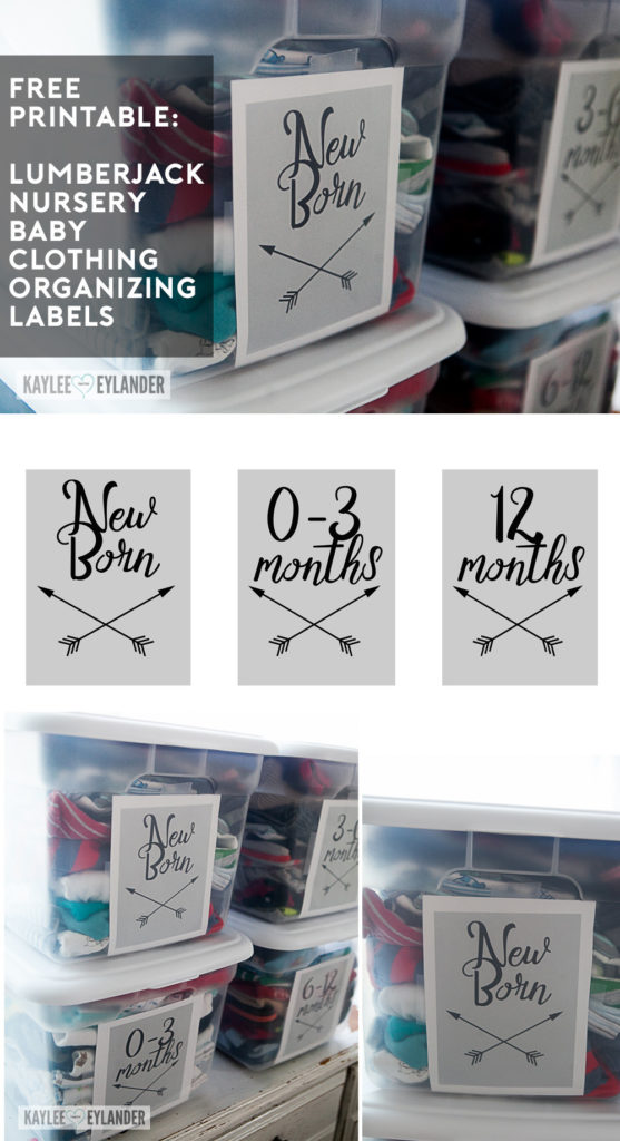 Baby Tribal Room Arrows Free Printables