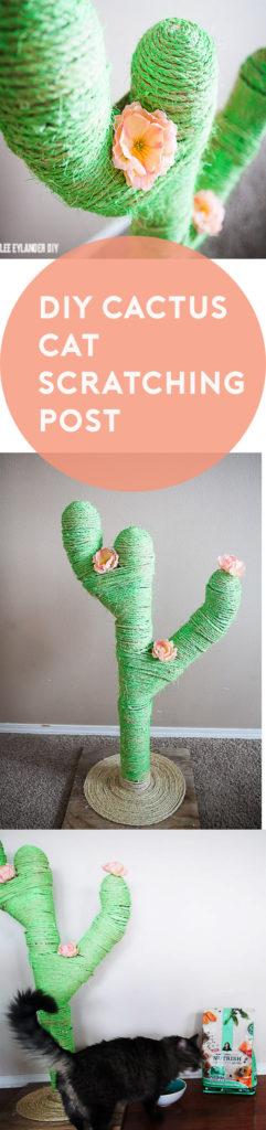 DIY Cactus Cat Scratching Post Tutorial