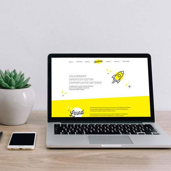 Web design and branding for Limonade.ca | Kaylynne Johnson - web & design | www.kaylynnejohnson.com