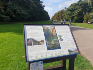 Cirencester Park - The Broad Avenue
