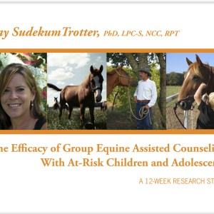 Equine Assisted Counseling