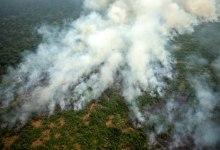 Photo of Krajnji cilj Bolsonara krčenje amazonskih šuma?