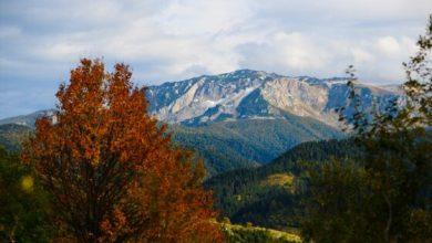 Photo of Zlatna jesen na Bjelašnici inspiriše ljubitelje prirode