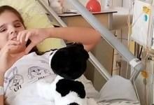 Photo of Do srijede potrebno 20.000 eura: Apel za pomoć djevojčici Lejli Adžić u borbi protiv raka oka