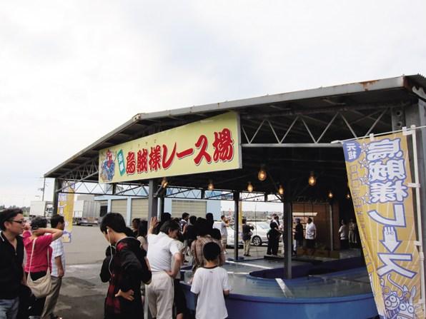 いかレース3