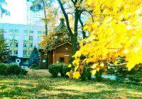 Золотая осень - антураж храма