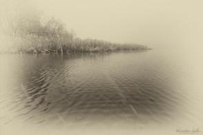 Schneetreiben am Schaalsee