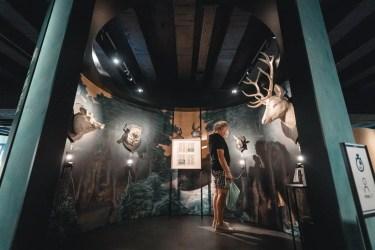 KBR museum © creativeroom