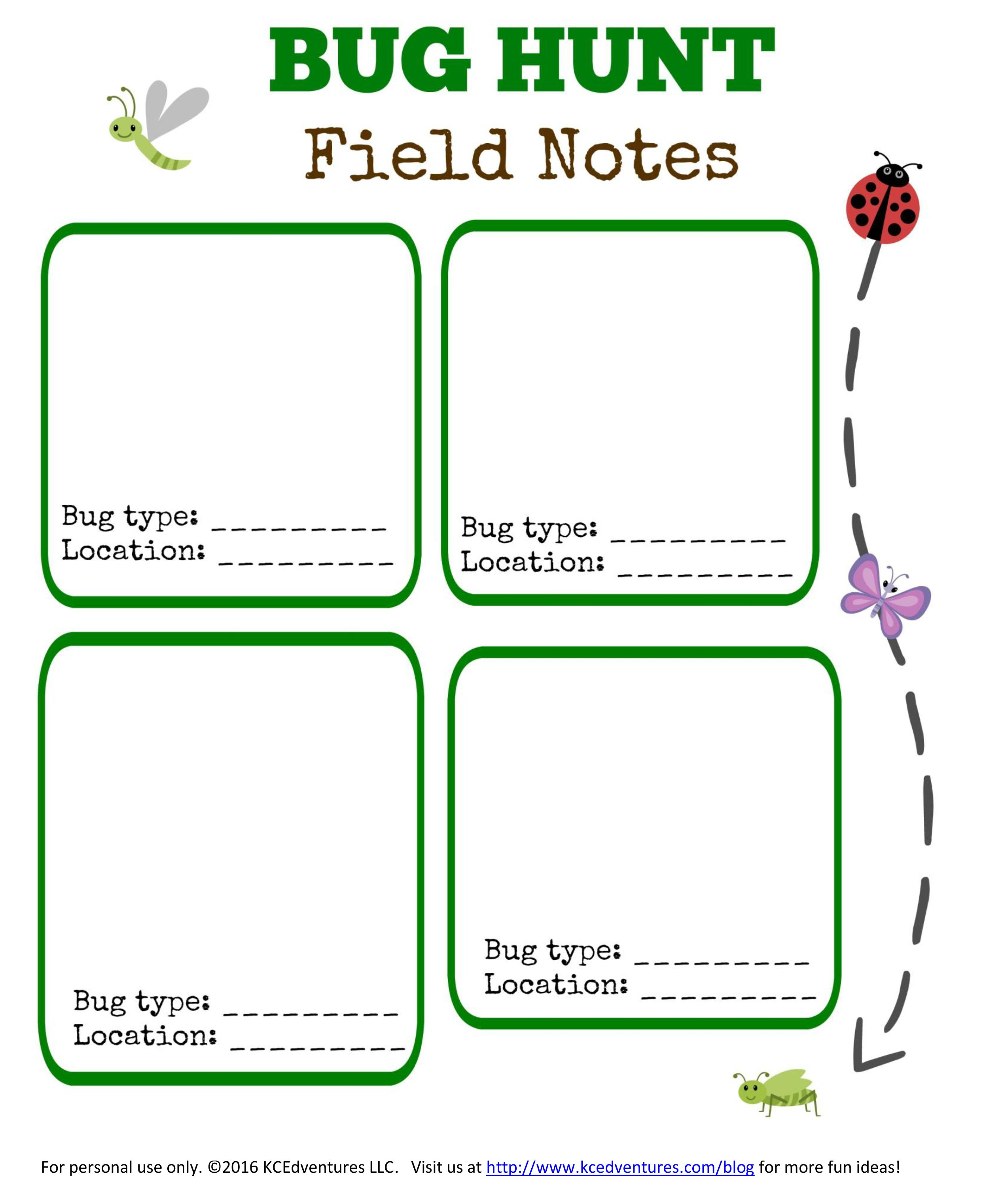 Bug Hunt Outdoor Activities For Kids W Free Printable