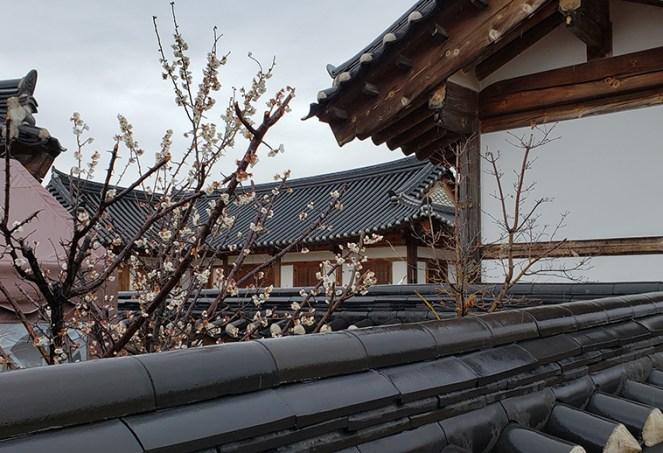 Busan day 4 - Gyochon Traditional Village 4