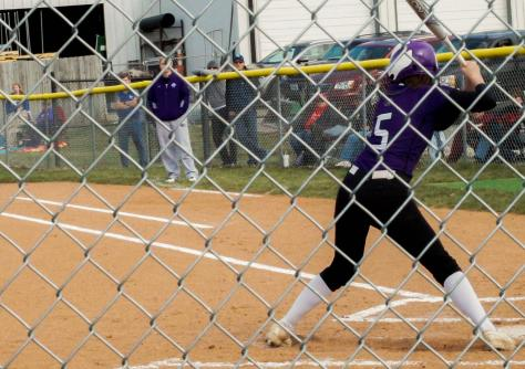 Softball Falls Short of State